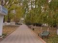 Parcul Cricova